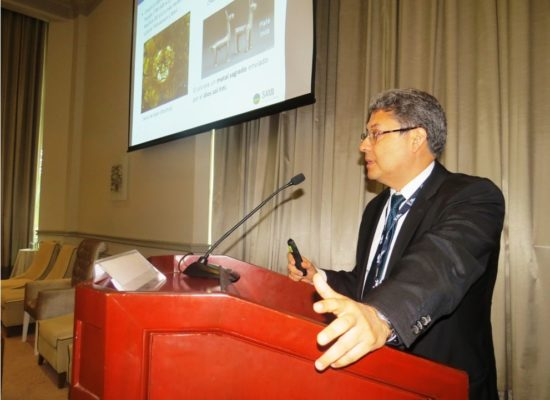 Primer Congreso Mundial Virtual de Minería – COVIDMIN 2020